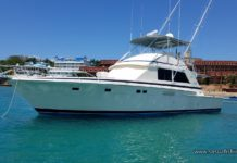 Bertram yacht for fishing charters